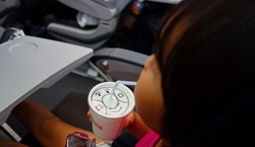 子連れ海外旅行!飛行機内持ち込み必需品リスト&テクニックを公開!