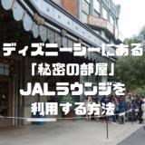 【秘密の部屋】東京ディズニーシーJALラウンジの予約手順と訪問レポ!