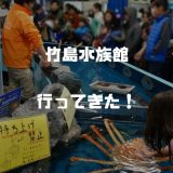 竹島水族館が2018年1月にリニューアルオープン!アシカカピバラ深海魚に会いに行ってきた!