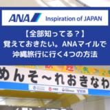 【全部知ってる?】ANAマイルで沖縄旅行に行く4つの方法、覚えておこう!