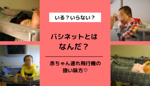 【JAL,ANA】バシネットとは?予約, 料金, 申込方法&利用レポ【外国の航空会社】