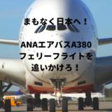 【まもなく日本へ!】ANAエアバスA380初号機フライングホヌのフェリーフライトを追いかけよう!