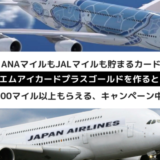【JAL・ANAマイル】エムアイカードプラスゴールドの申込みで2万マイル超、グアムや台湾も行ける!【どっちも貯まる】