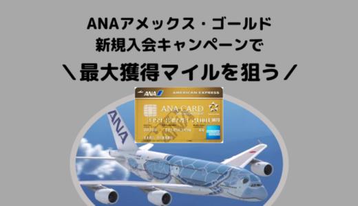 【ANA93,000マイル獲得可能】2019年10月ANAアメックスゴールド入会キャンペーンが激アツ!!