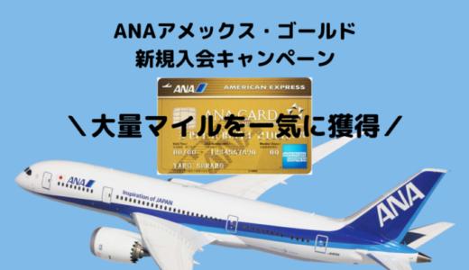 【ANA77,500マイル獲得可能】2019年12月ANAアメックスゴールド入会キャンペーンが激アツ!!