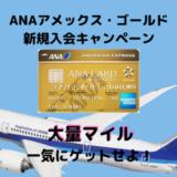 【ANA103,000マイル獲得可能】2020年6月ANAアメックスゴールド入会キャンペーンが激アツ!!