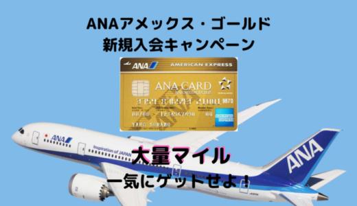 【ANA73,000マイル獲得可能】2020年11月ANAアメックスゴールド入会キャンペーンが激アツ!!