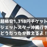 【驚愕の1,318円!】ジェットスターでセントレアから沖縄へ。空港・機内の様子と注意点を教えるよ!