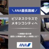 【搭乗記】ANAビジネスクラスに乗って、家族4人でメキシコシティへ!