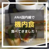 ANA国内線で機内食が食べられる!プレミアムクラス限定の食事とは?